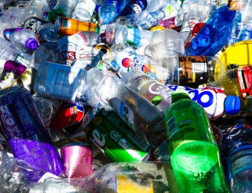 [기획] 음식용기부터 마스크까지… 플라스틱 쓰레기에 대한 인식과 해결방안